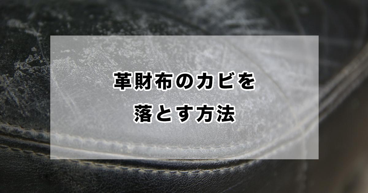 【完全ガイド】革財布のカビを落とす方法、カビの度合いや素材ごとに手入れ方法を紹介